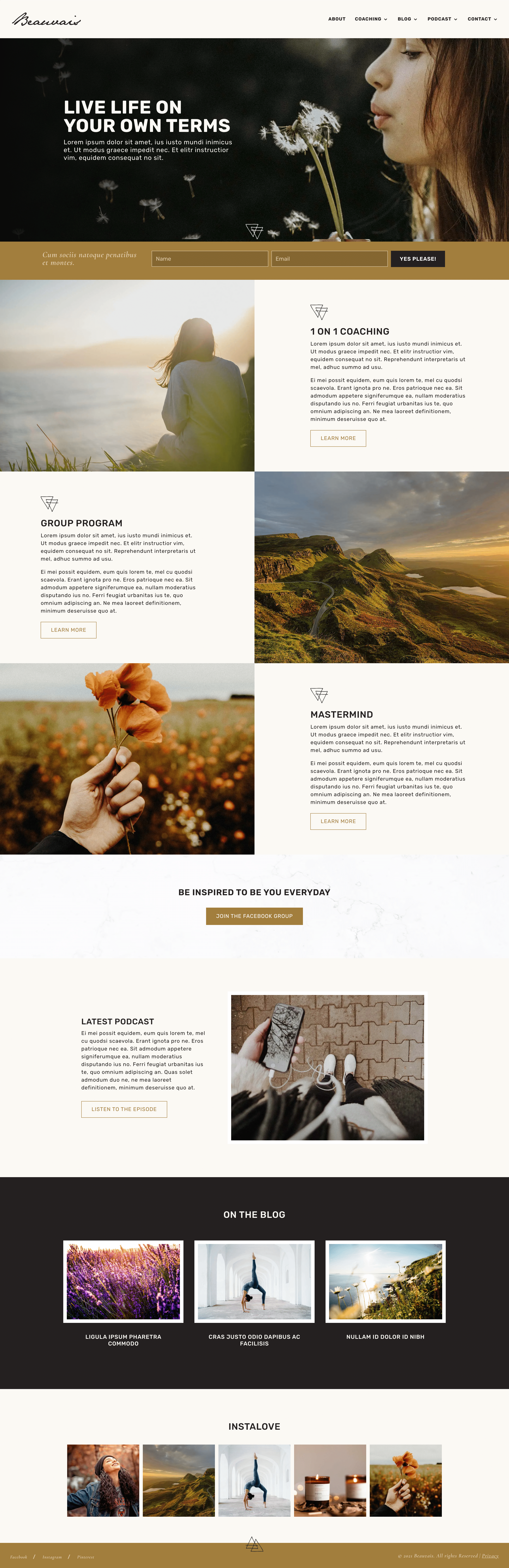 Website template for coaches and healers