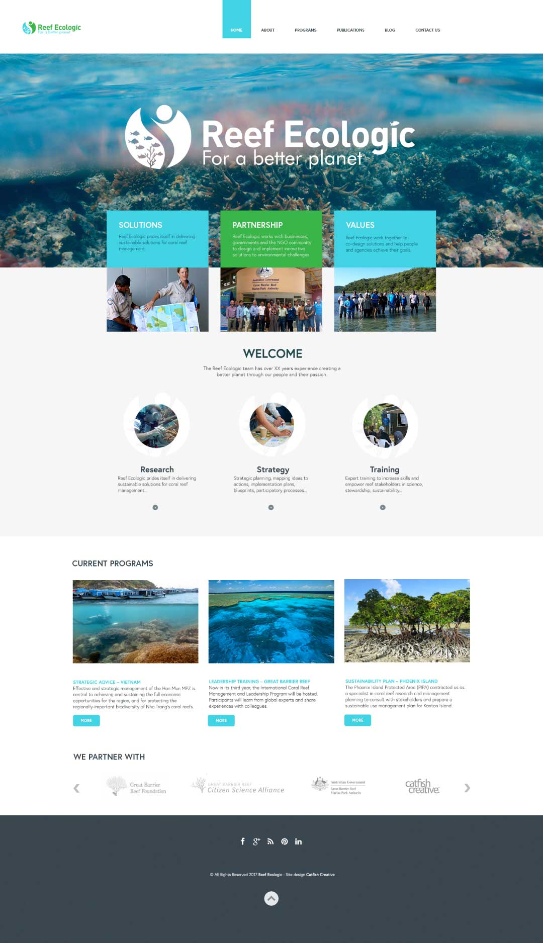 Reef Ecologic homepage design